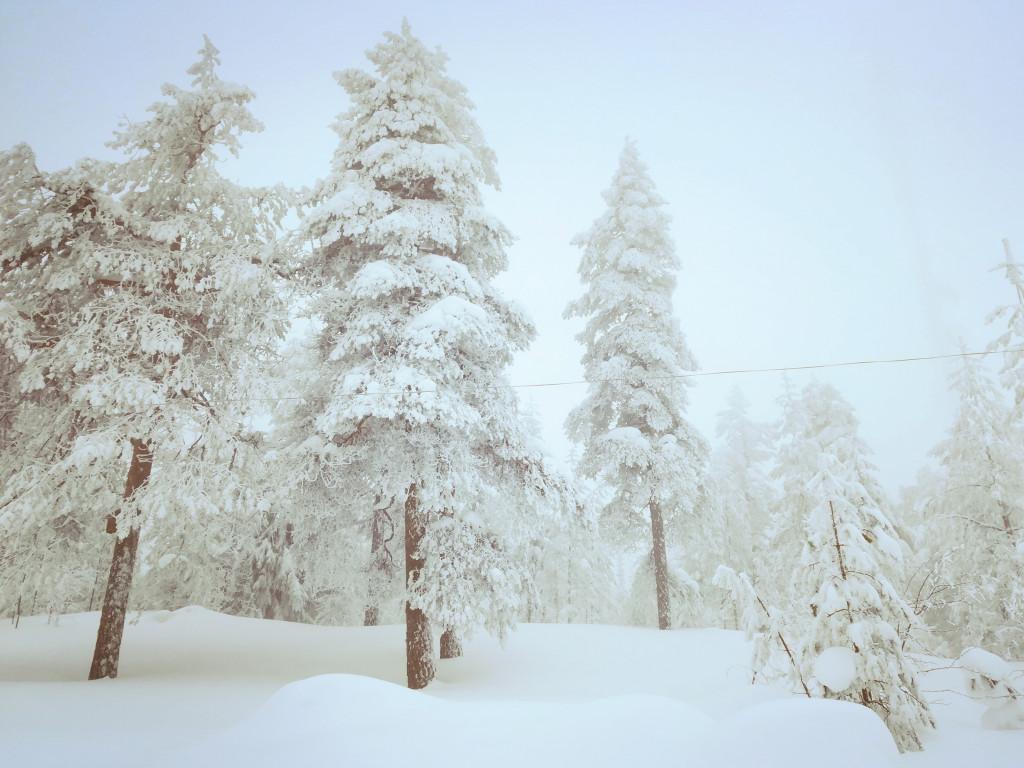 Winter Schweden