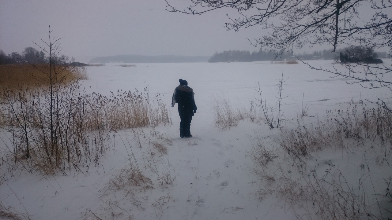 Aland im Winter