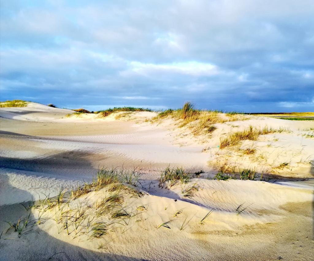Dünen Dänemark Ostsee