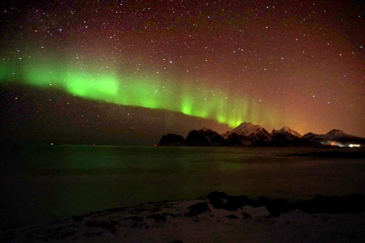 Polarlichter am Haukland Beach, Lofoten