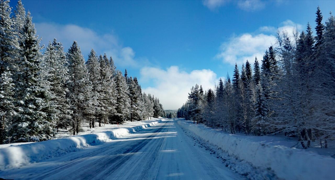E12 in Schweden im Winter