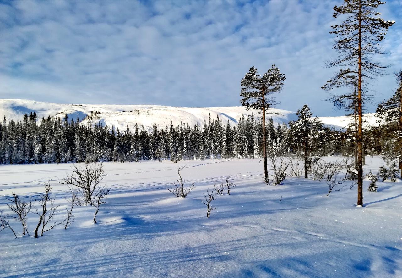 Nationalpark Fulufjället im Winter – Njupeskär Wasserfall