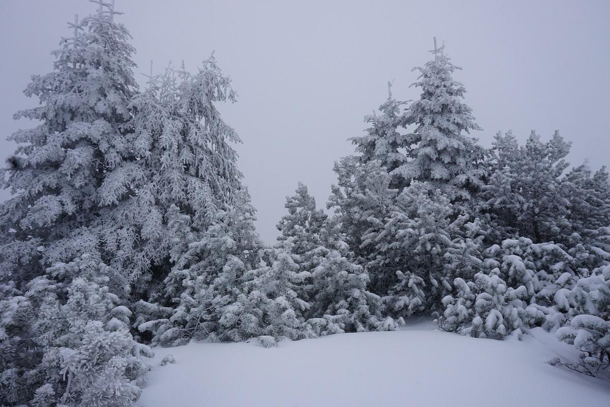 Schnee auf dem Wank im Winter Oberbayern