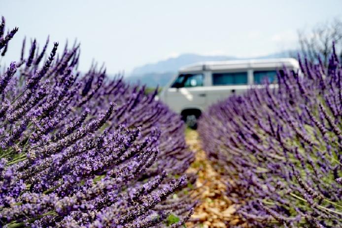 Bullitour durch die Provence zum Lavendel