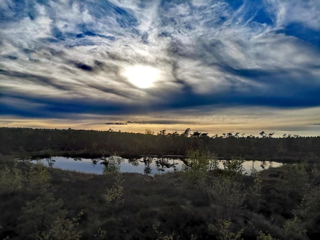 Torfauge im Schwarzen Moor
