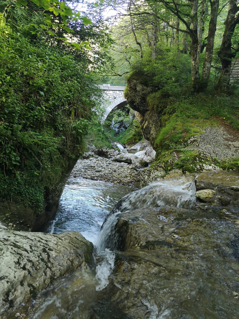 Ecouges Drevenne Fluss Brücke