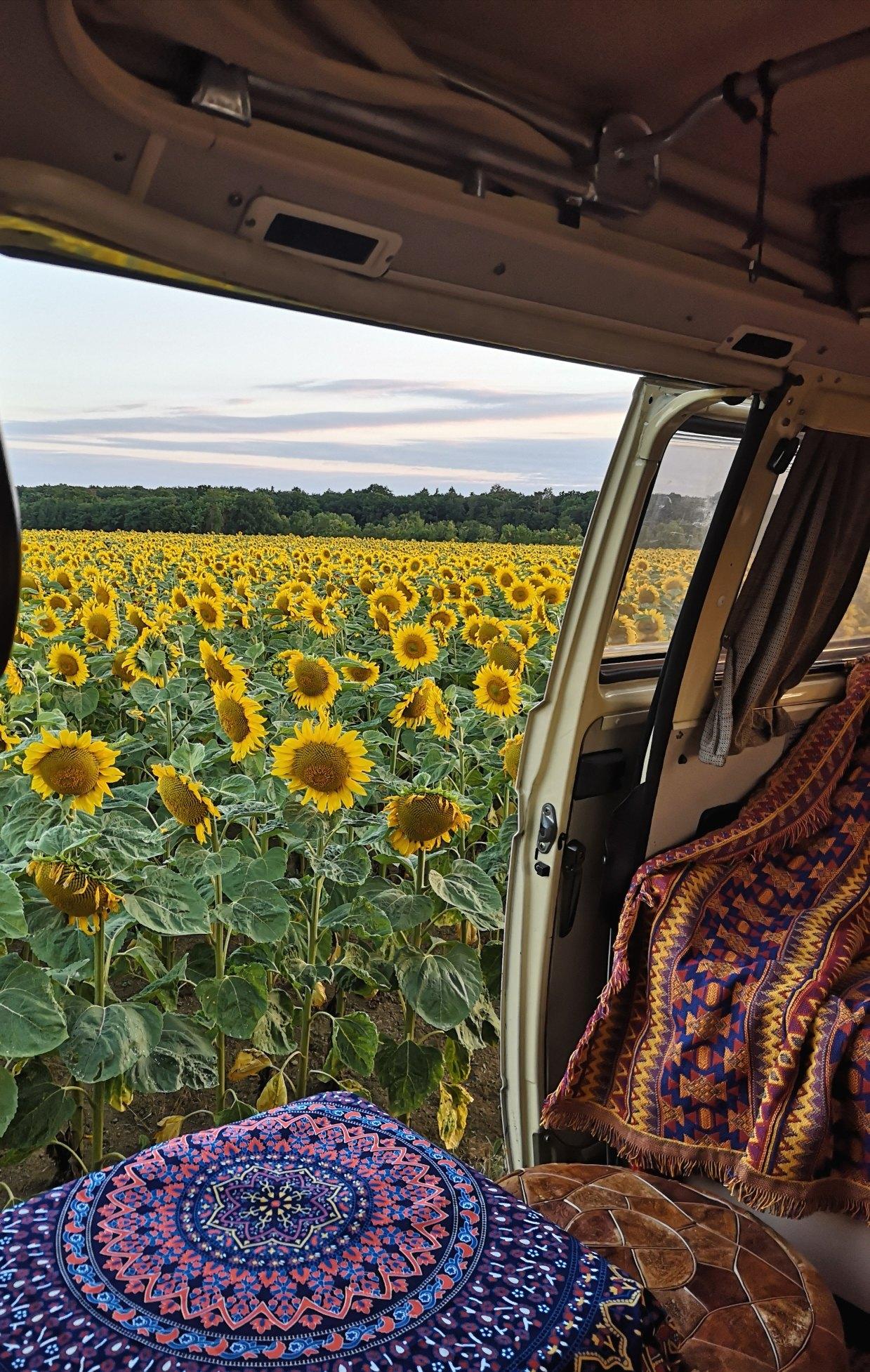 Deko im Campervan – Was haben wir in unseren VW T3