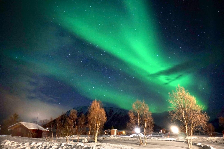 Aurora Borealis Norwegen Vesteralen